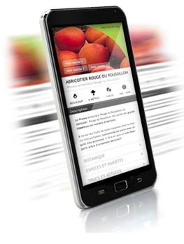 Etiquette Smartphone